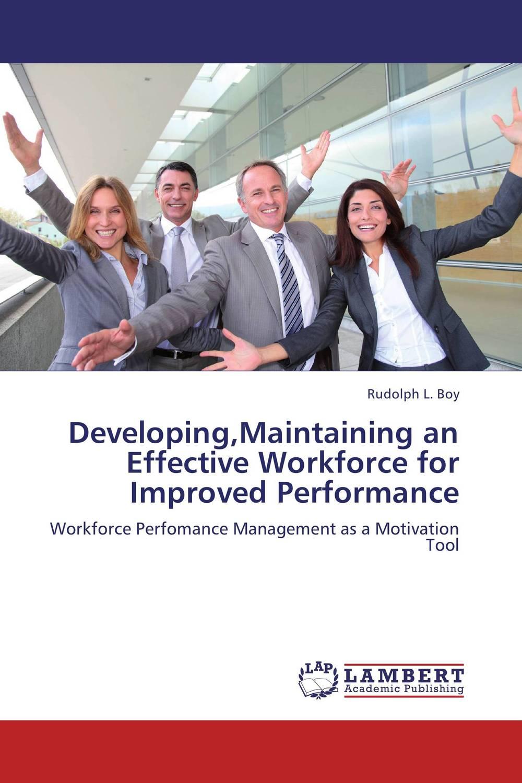 Developing,Maintaining an Effective Workforce for Improved Performance david parmenter key performance indicators developing implementing and using winning kpis