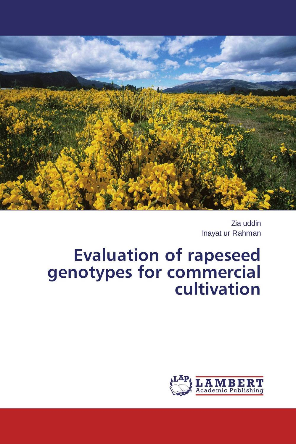 Evaluation of rapeseed genotypes for commercial cultivation
