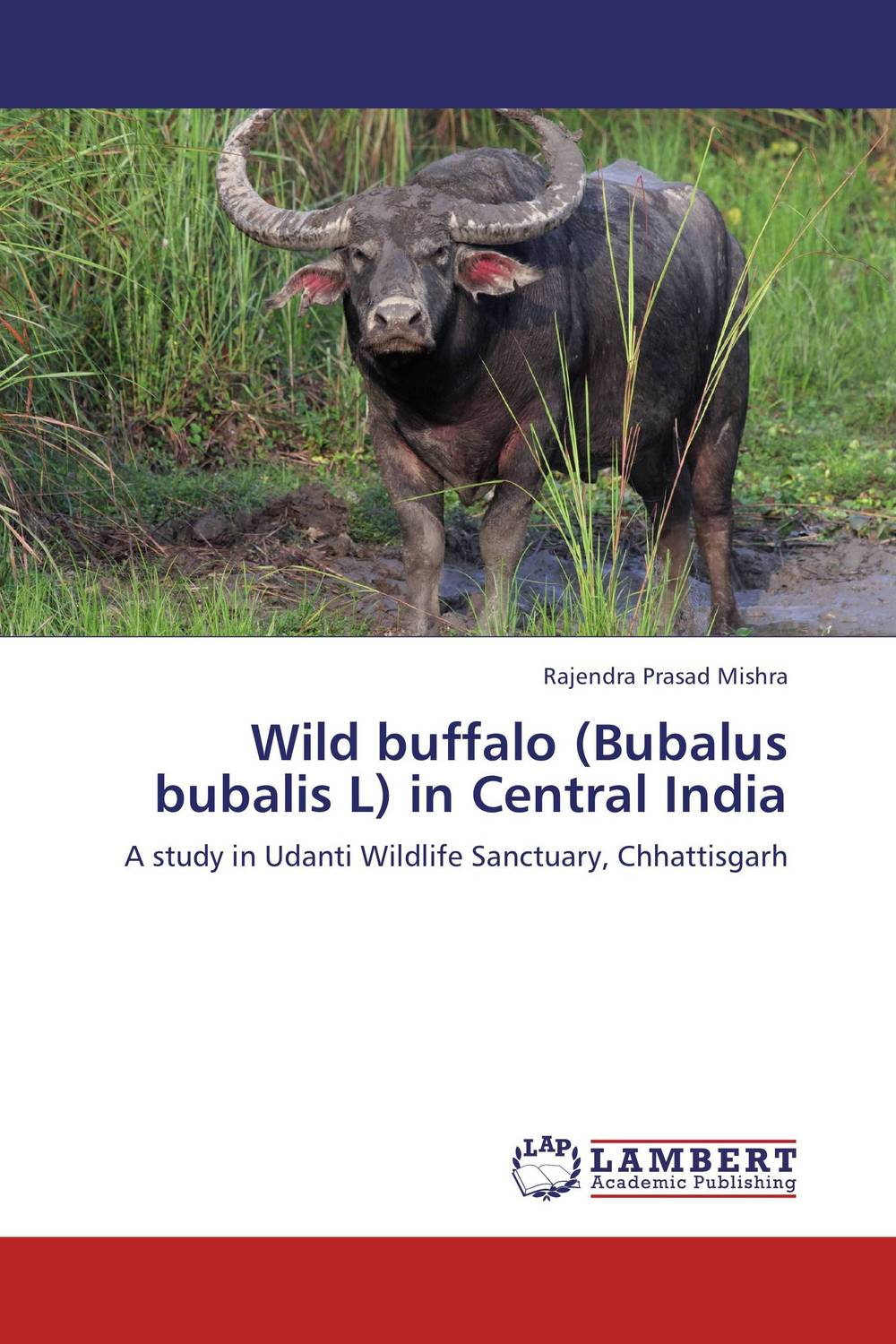 Wild buffalo (Bubalus bubalis L) in Central India wells h g the grisly folk and the wild asses of the devil