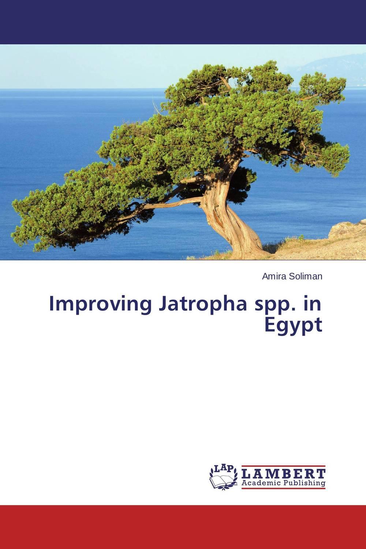 Improving Jatropha spp. in Egypt jatropha species