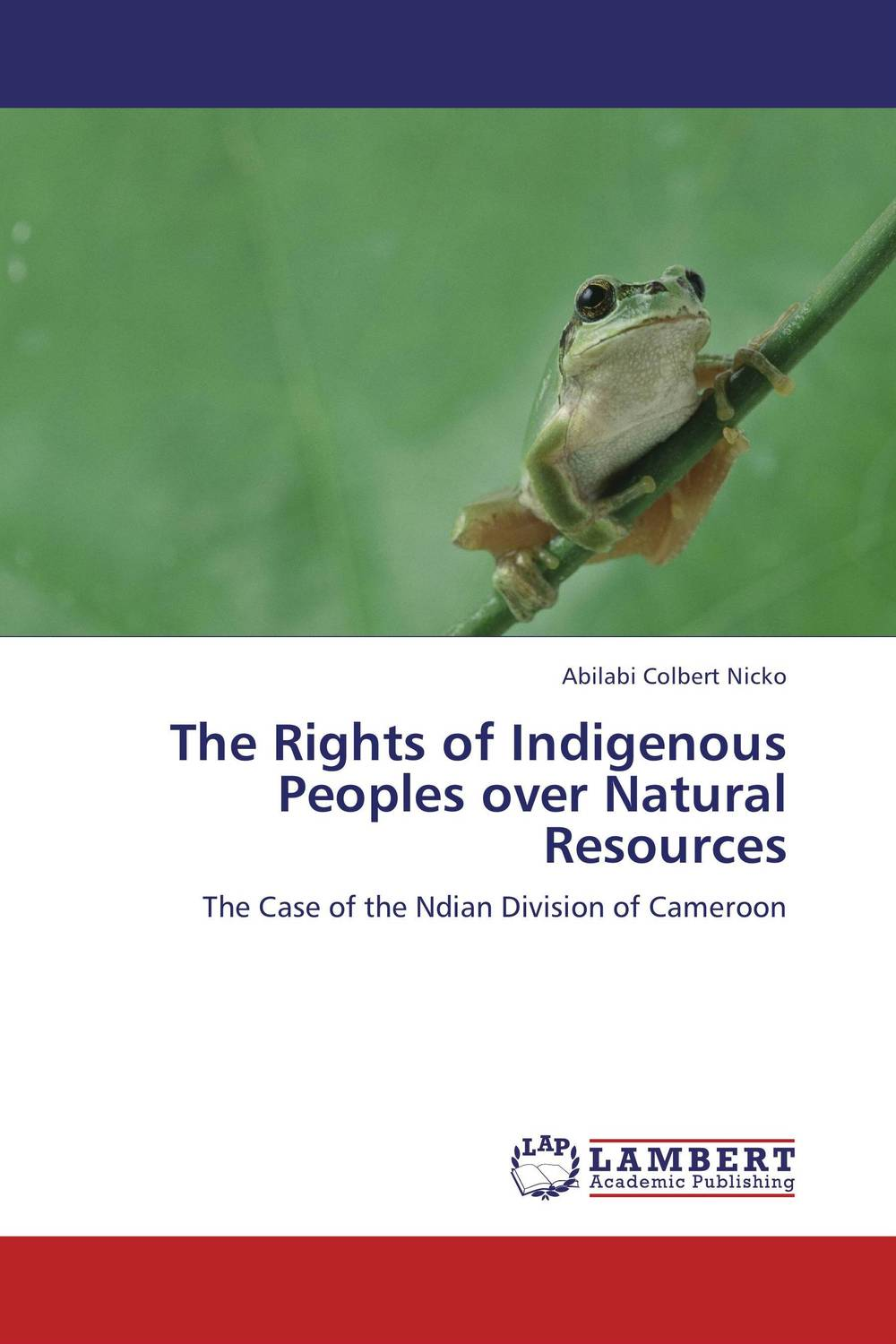 The Rights of Indigenous Peoples over Natural     Resources documents of the african commission on human and peoples rights volume ii 1999 2007