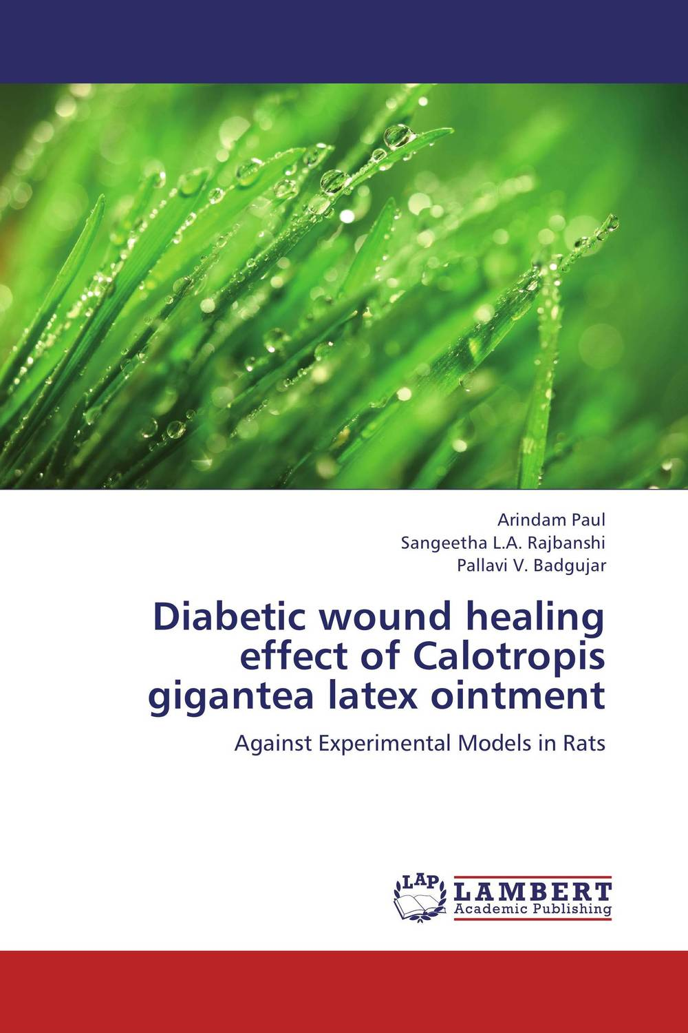 Diabetic wound healing effect of Calotropis gigantea latex ointment wound healing properties of some indigenous ghanaian plants