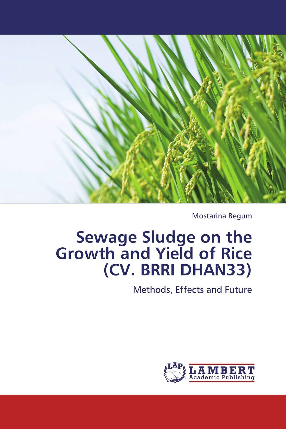 Sewage Sludge on the Growth and Yield of Rice (CV. BRRI DHAN33) effect of zn fe and fym on growth yield and nutrient content of rice