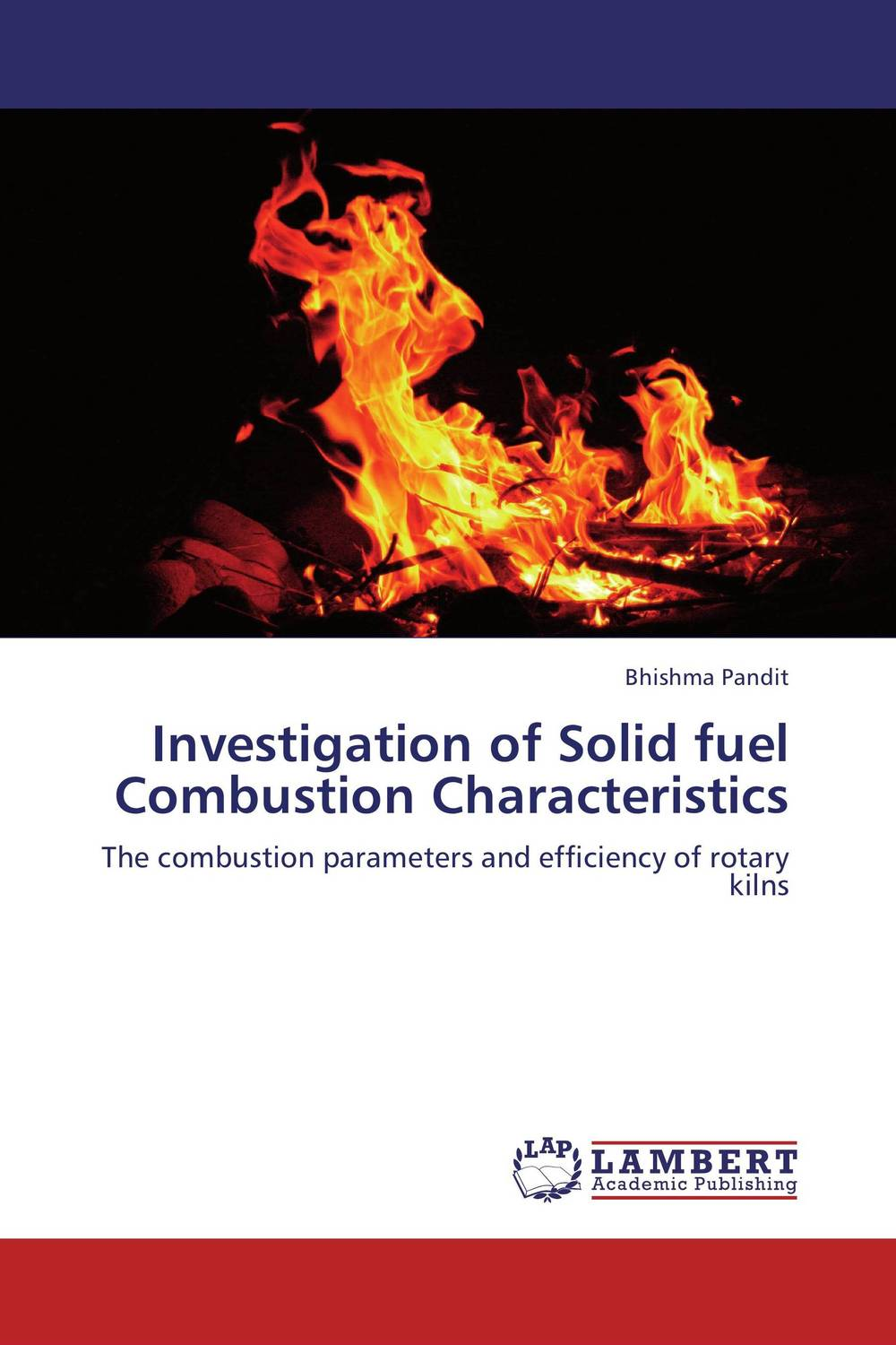 Investigation of Solid fuel Combustion Characteristics internalization of environmental cost