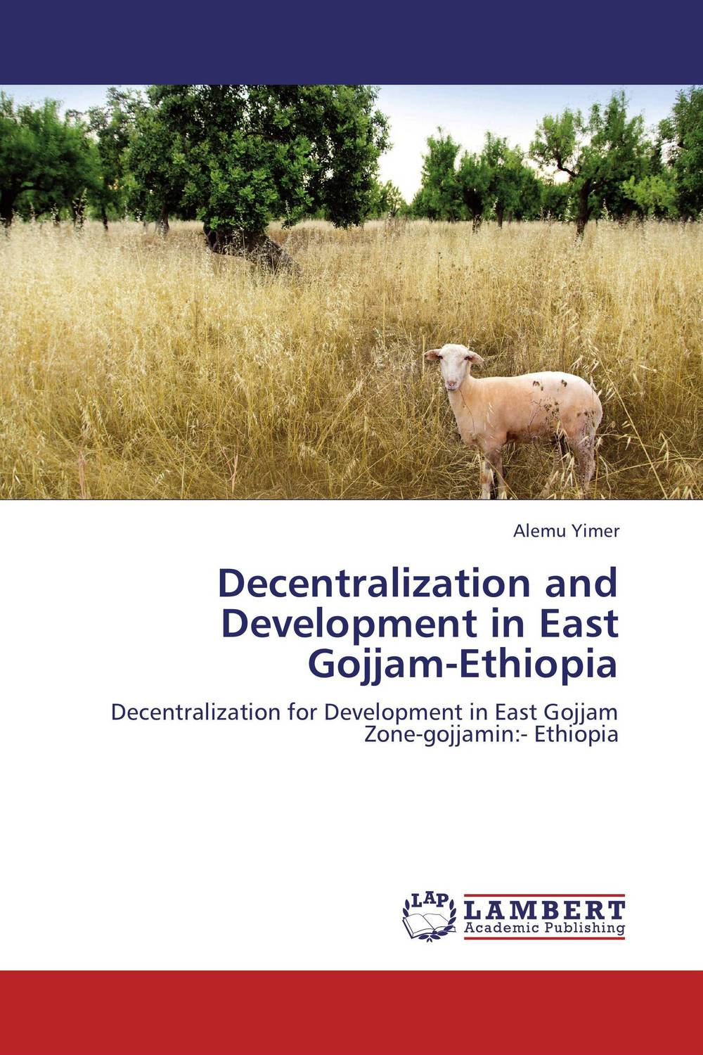Decentralization and Development in East Gojjam-Ethiopia the challenges of decentralization in promoting citizen participation