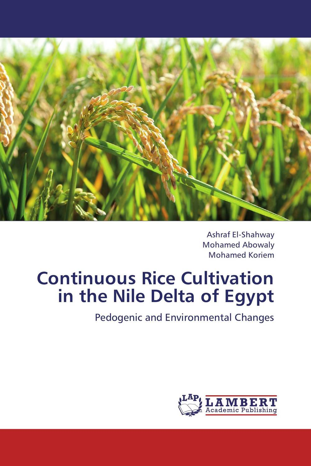 Continuous Rice Cultivation in the Nile Delta of Egypt tillage system in rice cultivation