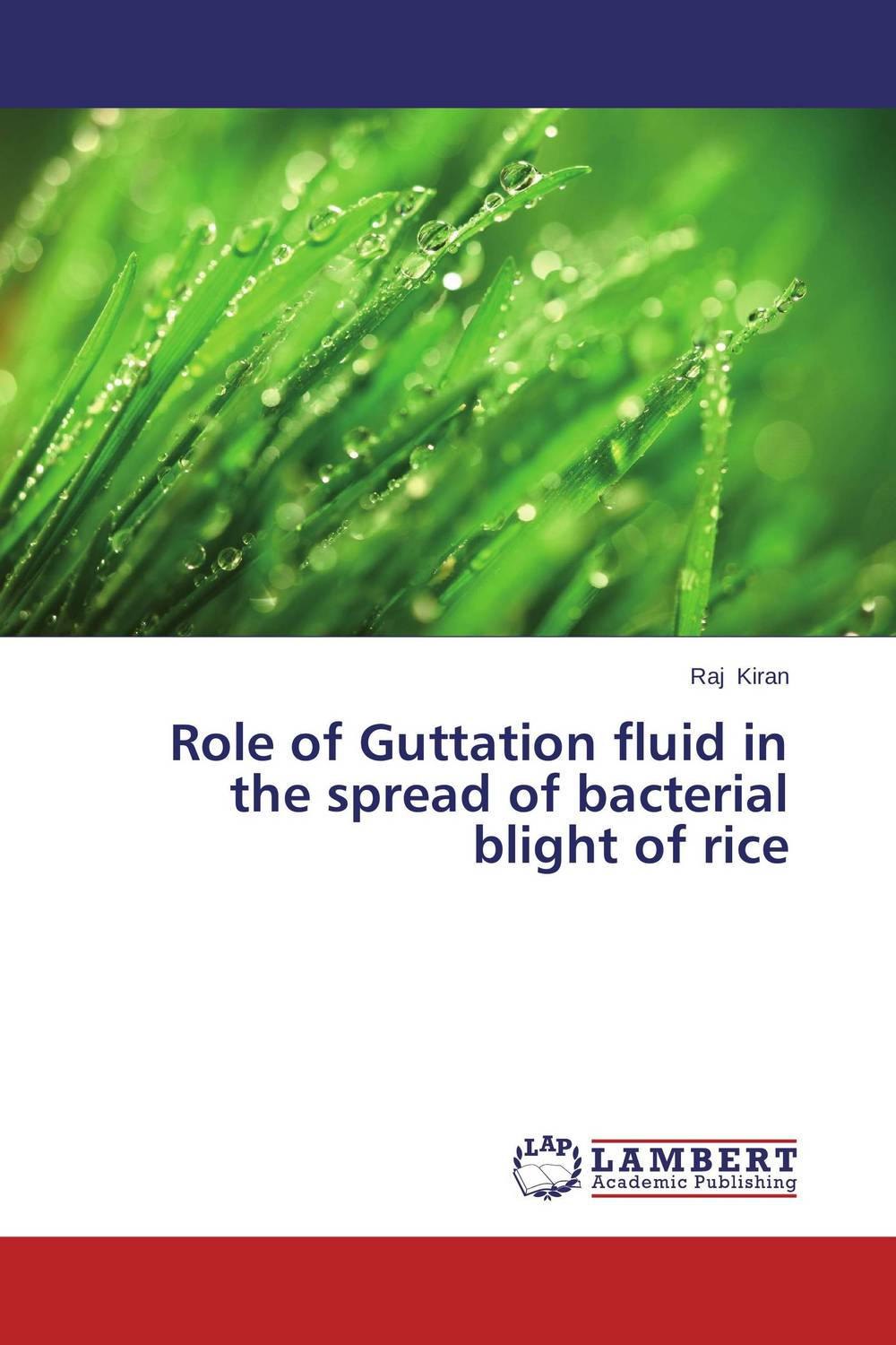 Role of Guttation fluid in the spread of bacterial blight of rice analysis of bacterial colonization on gypsum casts