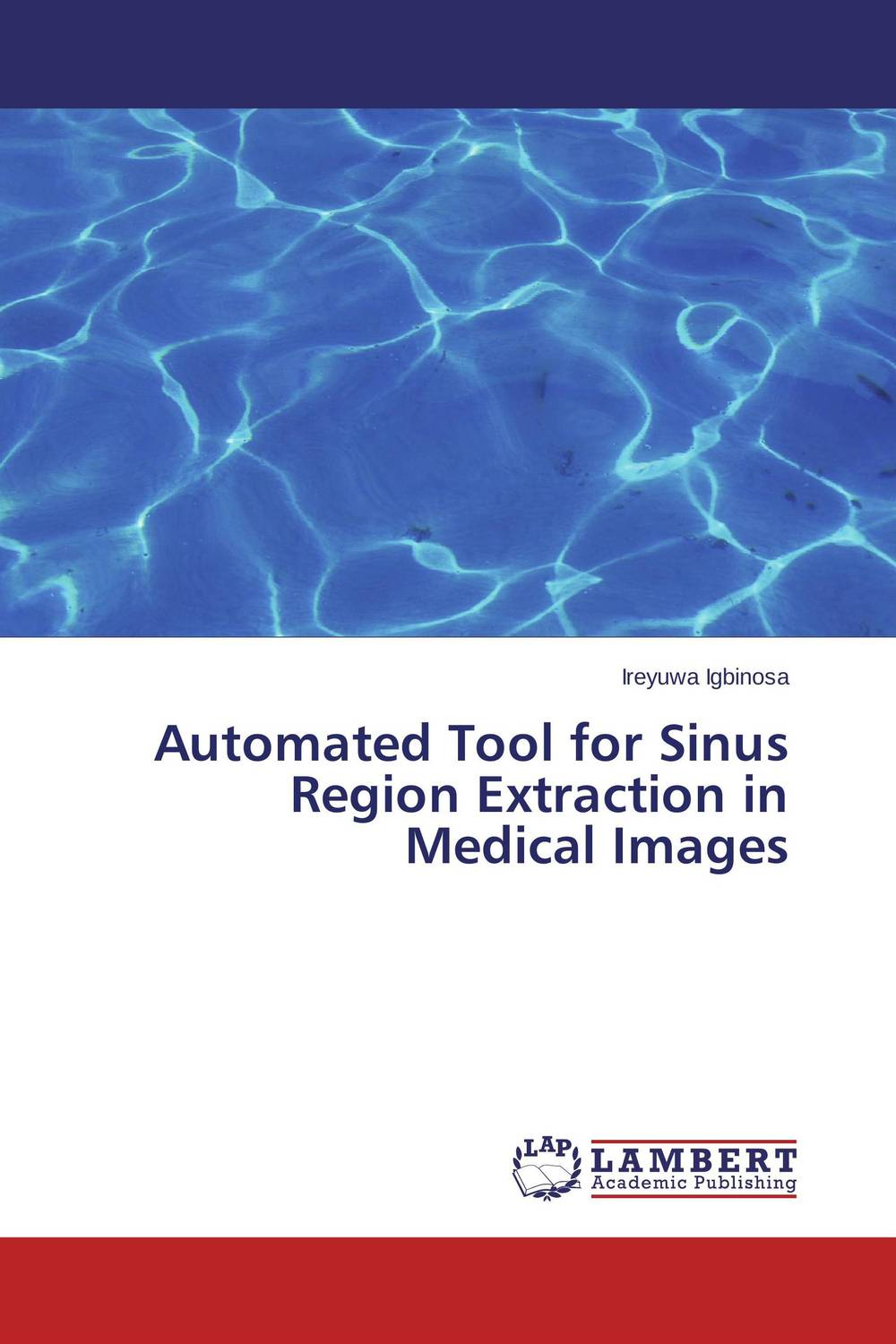 Automated Tool for Sinus Region Extraction in Medical Images new techniques for early diagnosis of rheumatoid arthritis