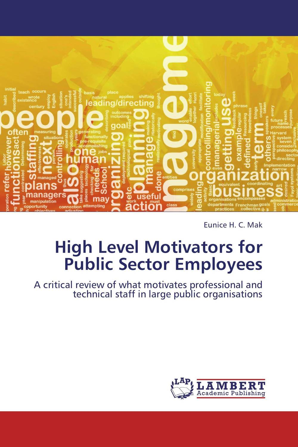 High Level Motivators for Public Sector Employees