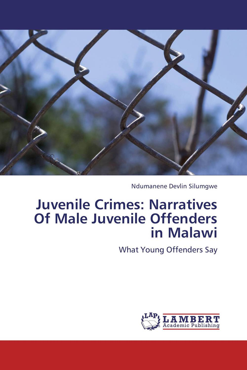 Juvenile Crimes: Narratives Of Male Juvenile Offenders in Malawi linguistic diversity and social justice