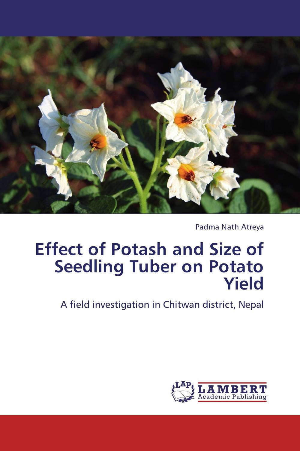 Effect of Potash and Size of Seedling Tuber on Potato Yield manuscript found in accra