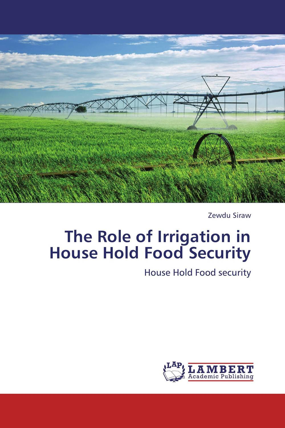 купить The Role of Irrigation in House Hold Food Security недорого