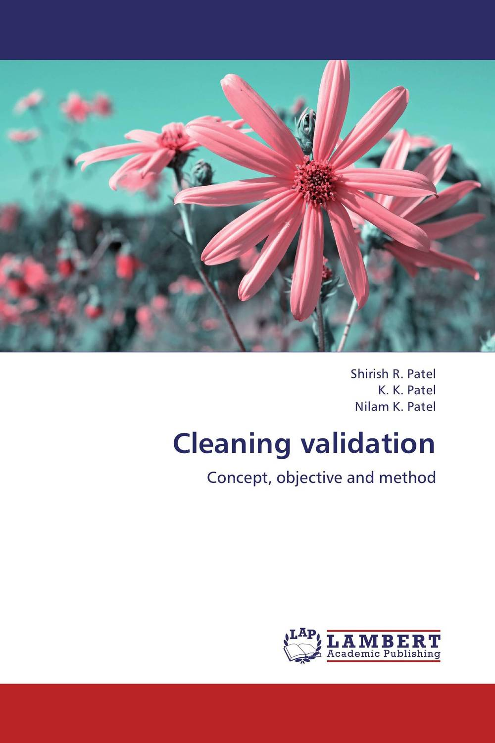 Cleaning validation developments in surface contamination and cleaning methods for removal of particle contaminants