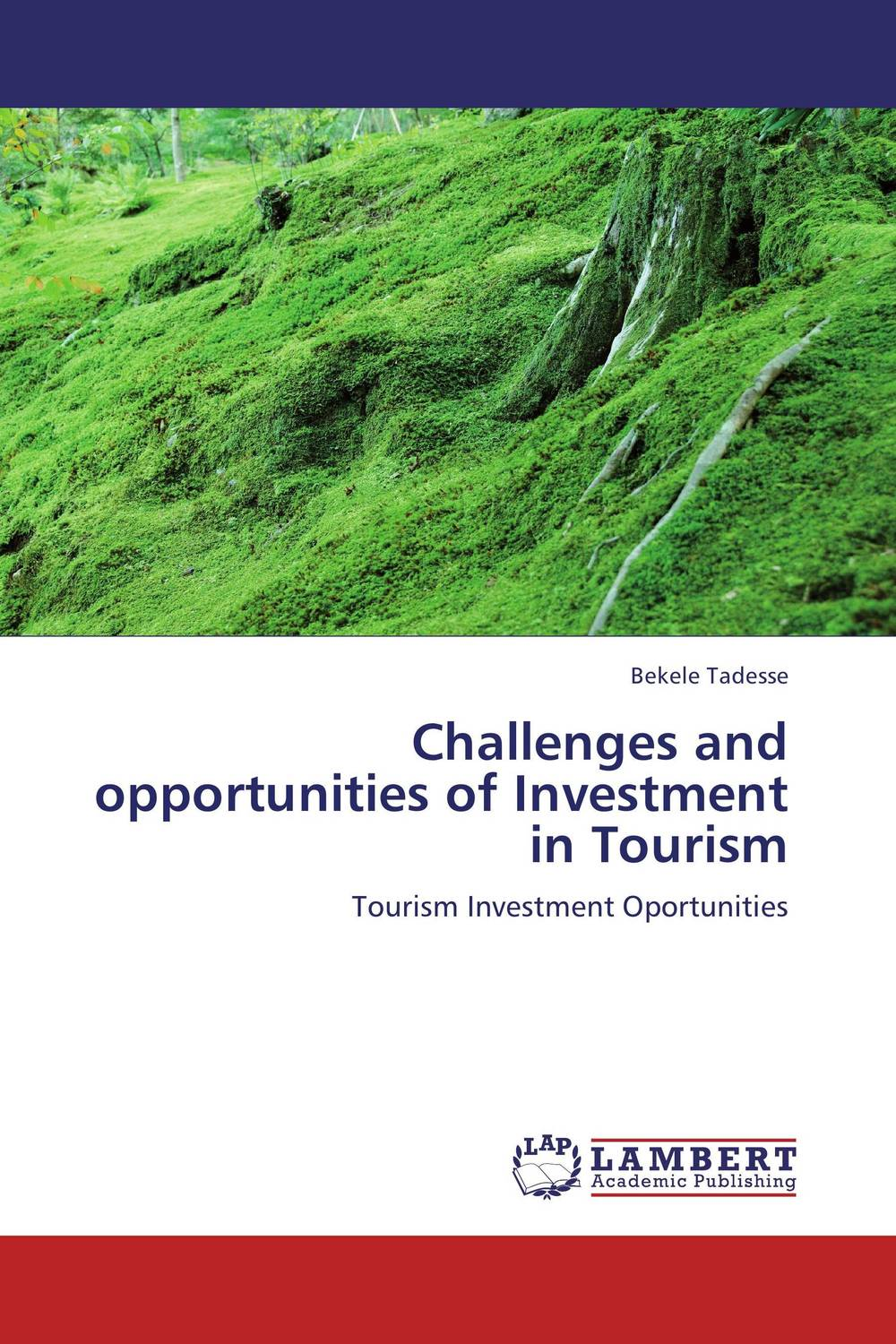 Challenges and opportunities of Investment in Tourism new media and domestic tourism promotion in kenya