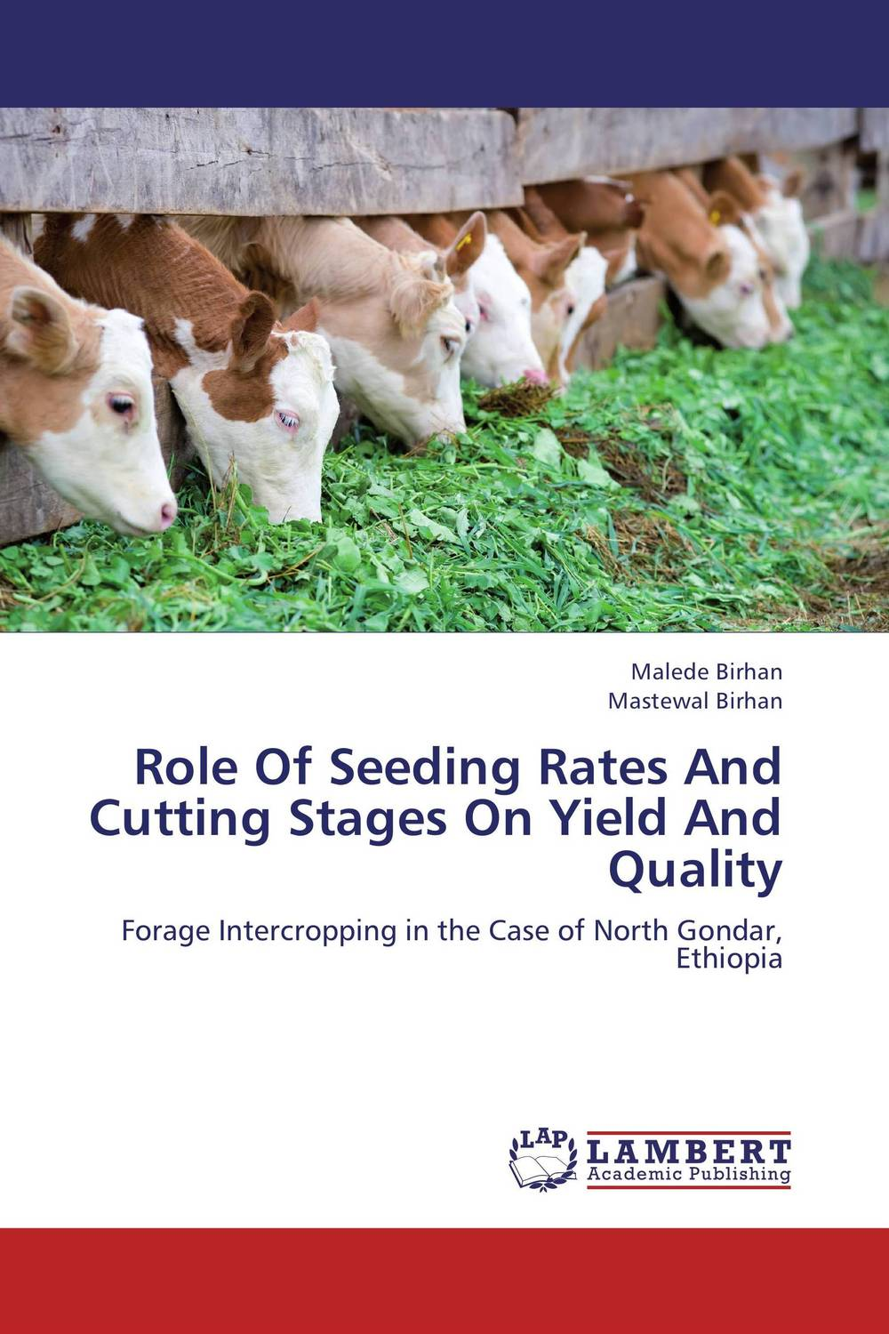 Фото Role Of Seeding Rates And Cutting Stages On Yield And Quality cervical cancer in amhara region in ethiopia