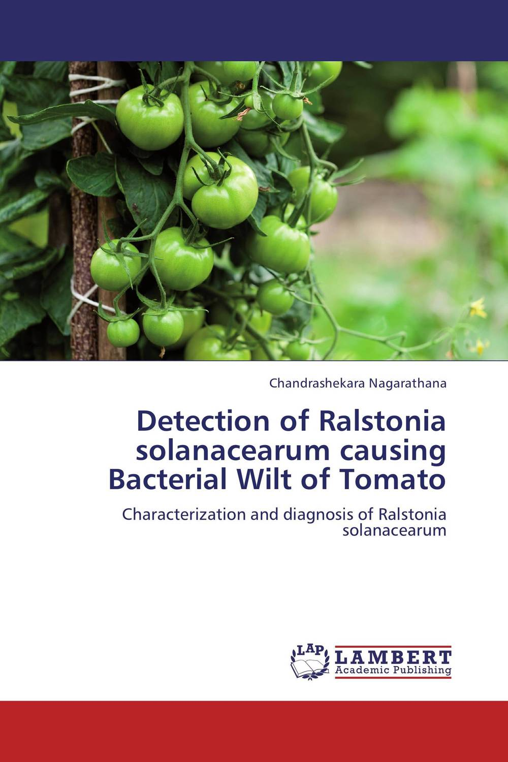 Detection of Ralstonia solanacearum causing Bacterial Wilt of Tomato improved expression of bacterial chia in plant by codon optimisation