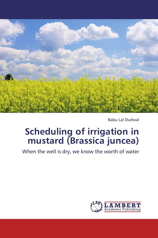 Scheduling of irrigation in mustard (Brassica juncea) subodh kumar and rakesh kumar response of organic nutrition and nitrogen on mustard brassica juncea