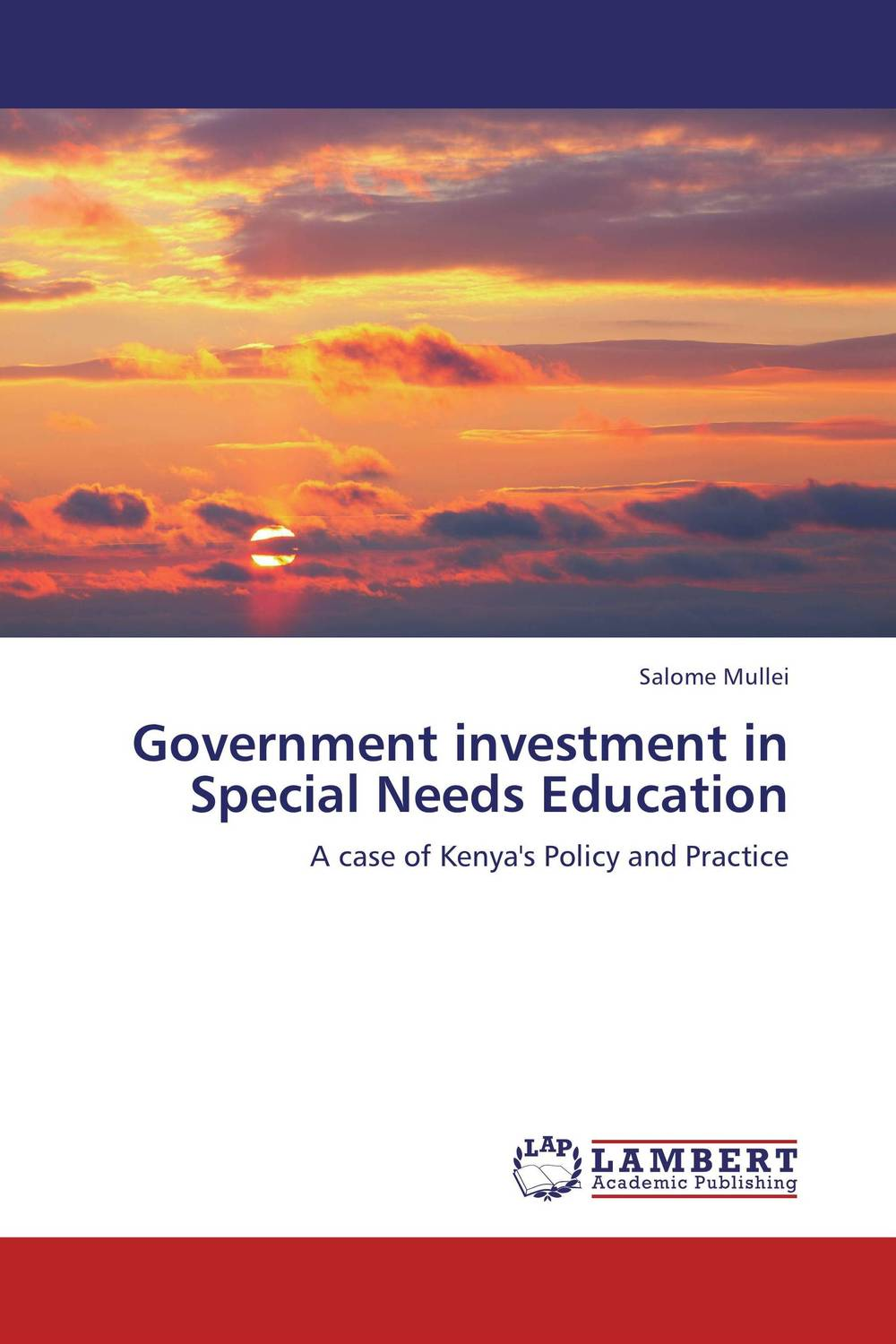 Government investment in Special Needs Education education special educational needs