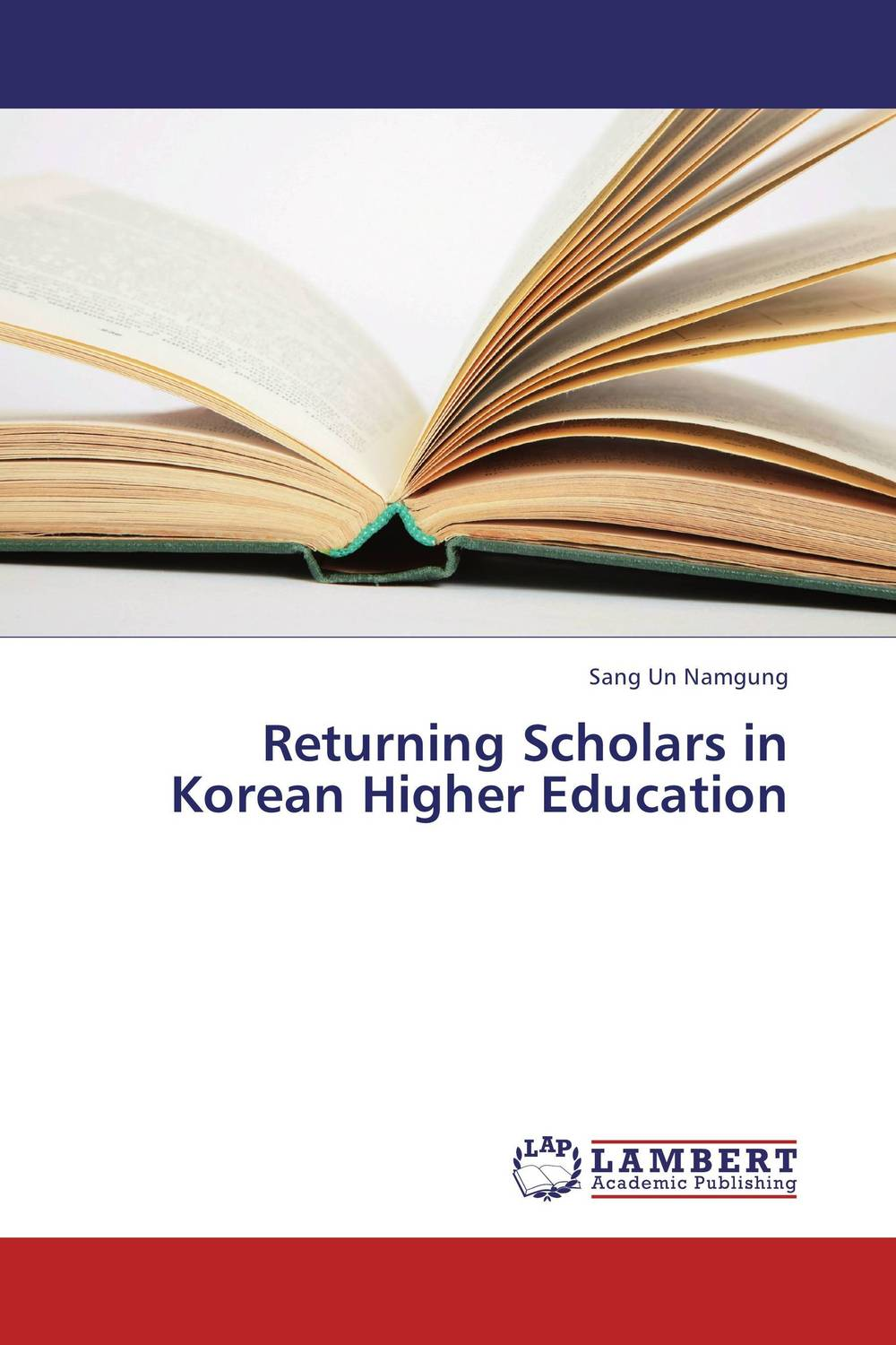 Returning Scholars in Korean Higher Education the salmon who dared to leap higher
