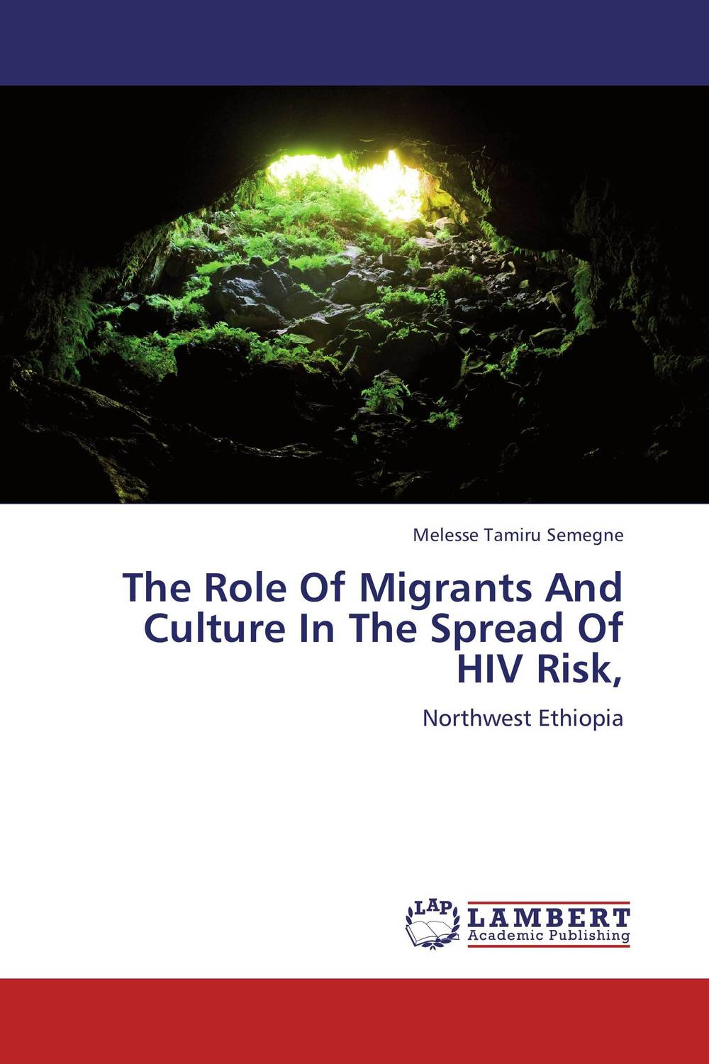 The Role Of Migrants And Culture In The Spread Of HIV Risk, risk regulation and administrative constitutionalism
