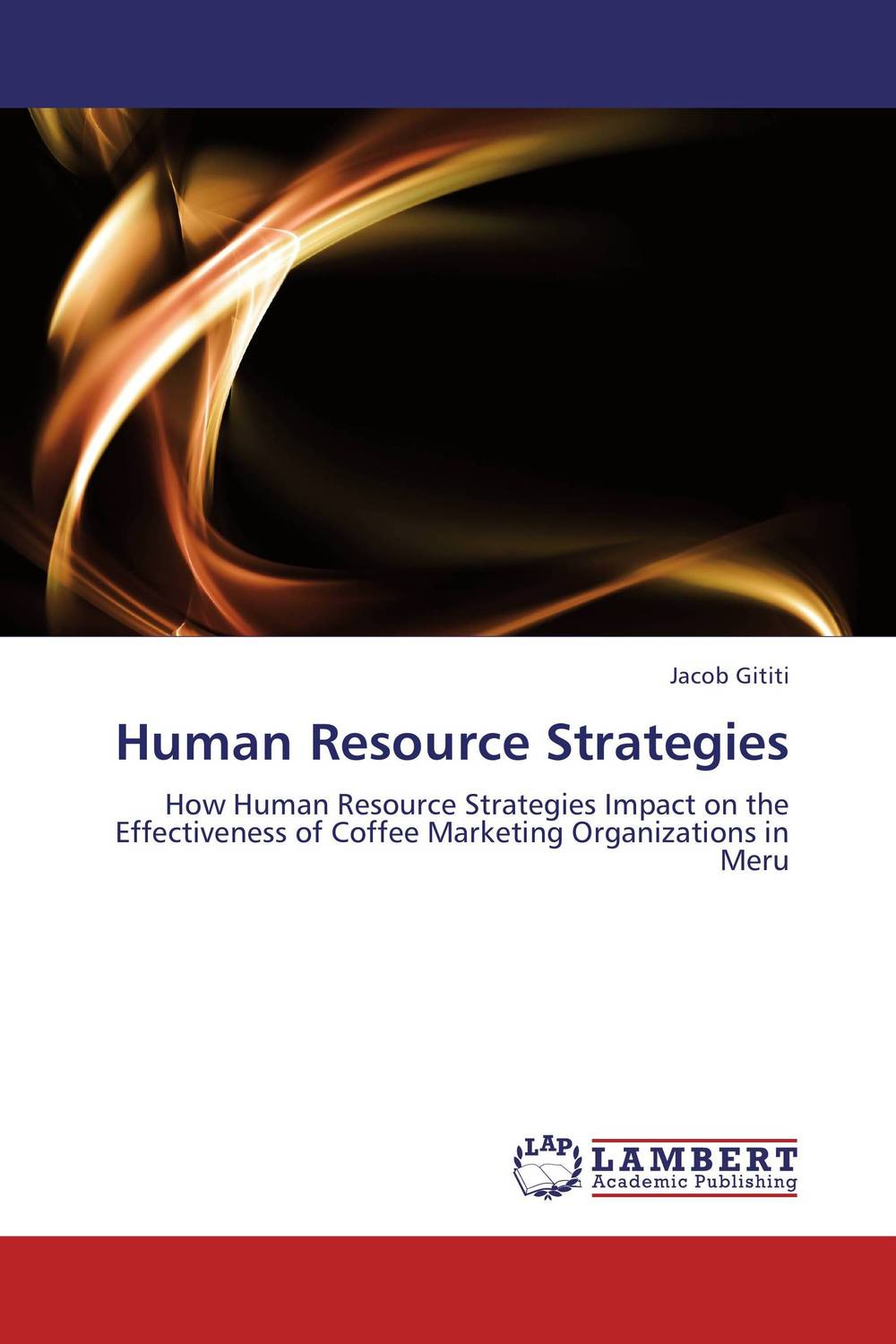 Human Resource Strategies building value through human resources