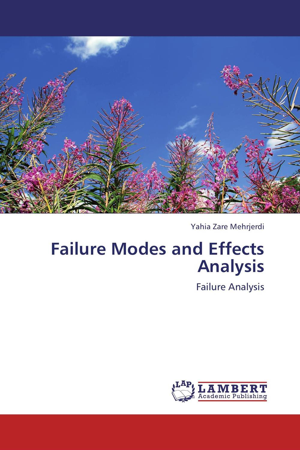 Failure Modes and Effects Analysis dynamic analysis and failure modes of simple structures