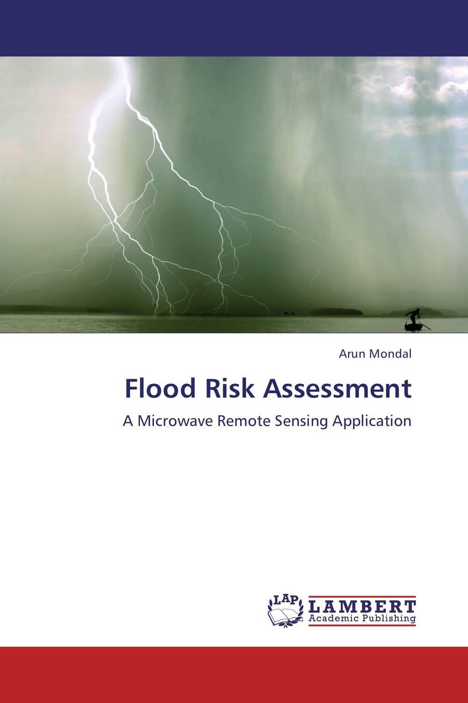 Flood Risk Assessment risk regulation and administrative constitutionalism