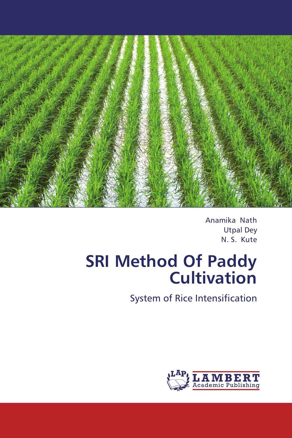 SRI Method Of Paddy Cultivation tillage system in rice cultivation