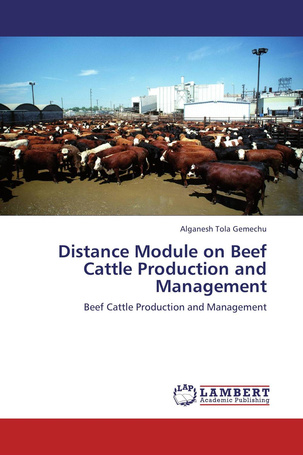 Distance Module on Beef Cattle Production and Management 30pcs in one postcard take a walk on the go dubai arab emirates christmas postcards greeting birthday message cards 10 2x14 2cm