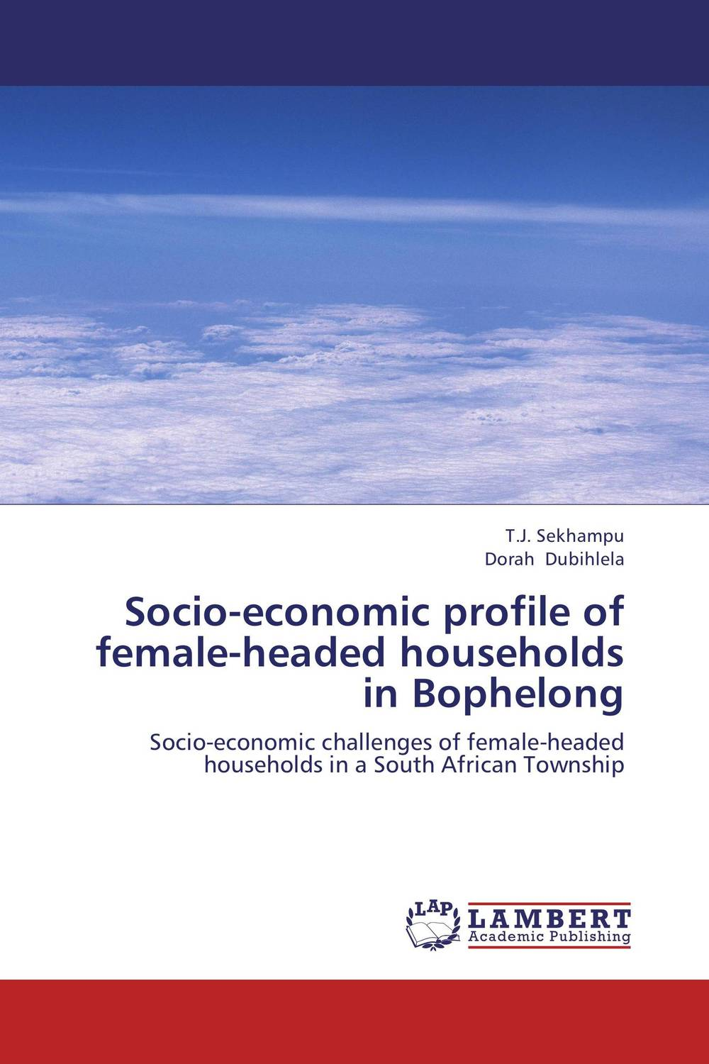 Socio-economic profile of female-headed households in Bophelong economic methodology