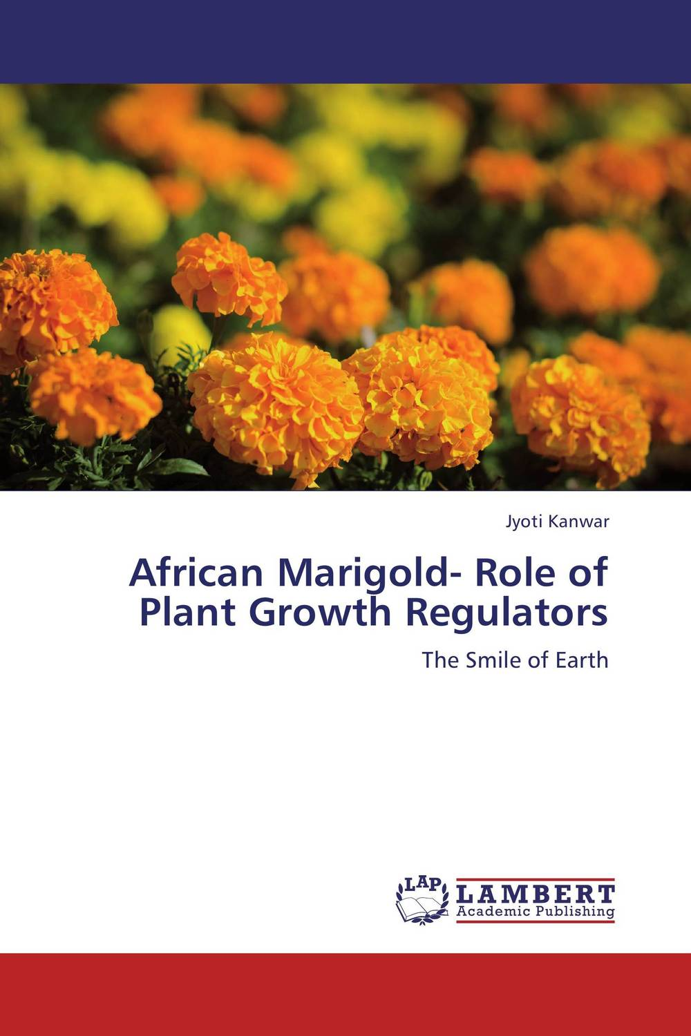 African Marigold- Role of Plant Growth Regulators the best exotic marigold hotel
