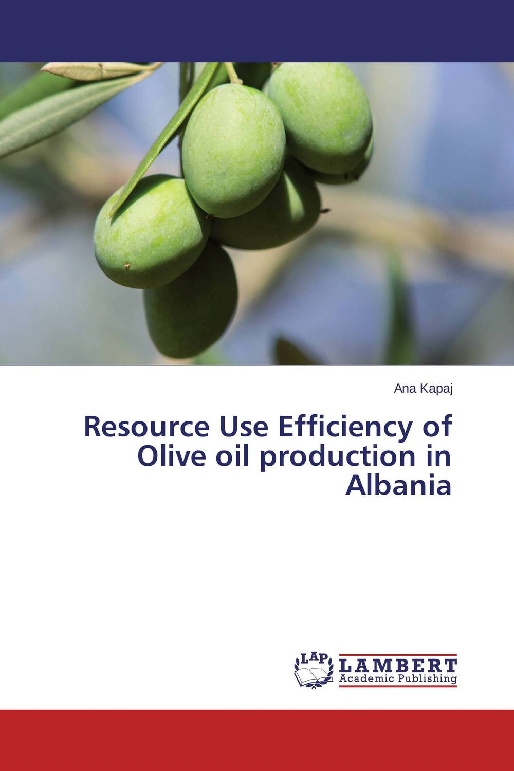 Resource Use Efficiency of Olive oil production in Albania oil separator integrates well the different techniques of oil separation in the design of its products