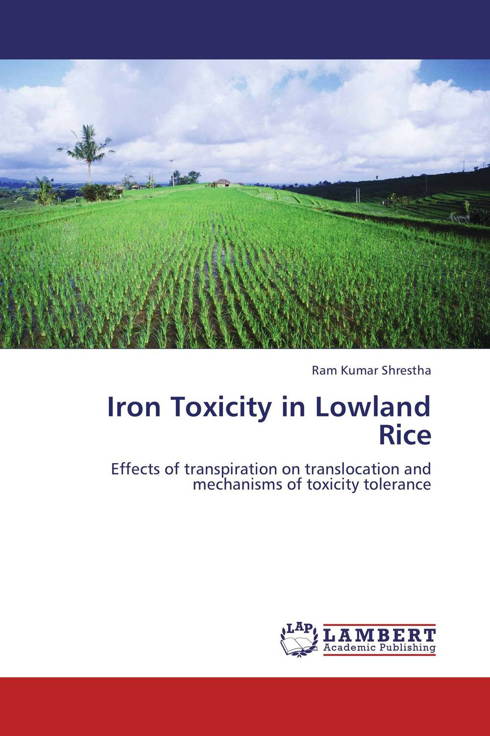 Iron Toxicity in Lowland Rice manuscript found in accra