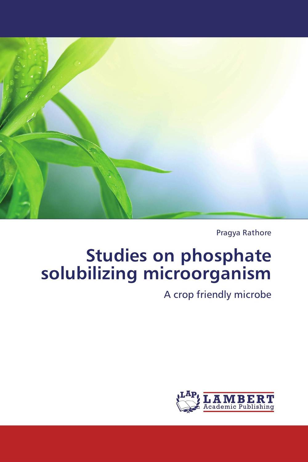 Studies on phosphate solubilizing microorganism studies on some snails associated with different crops
