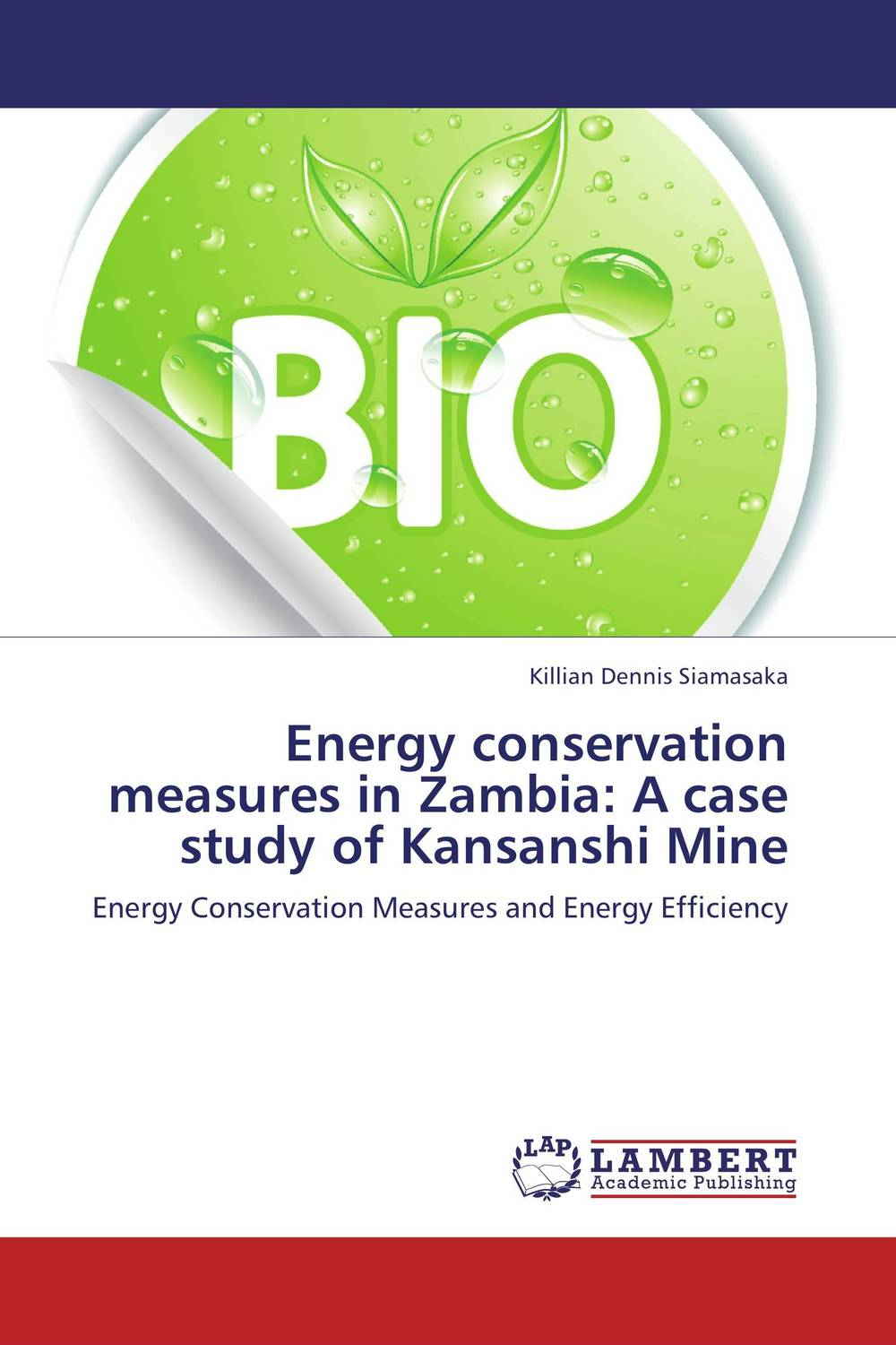 Energy conservation measures in Zambia: A case study of Kansanshi Mine infant parenting in zambia