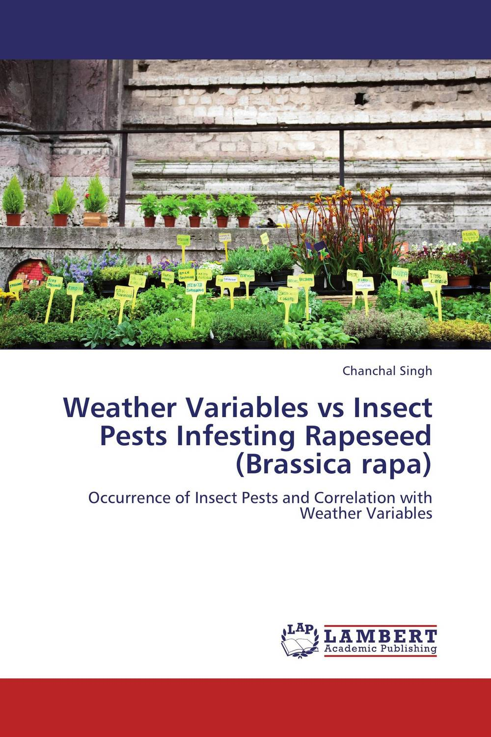Weather Variables vs Insect Pests Infesting Rapeseed (Brassica rapa) мягкие игрушки plants vs zombies котенок 15 см