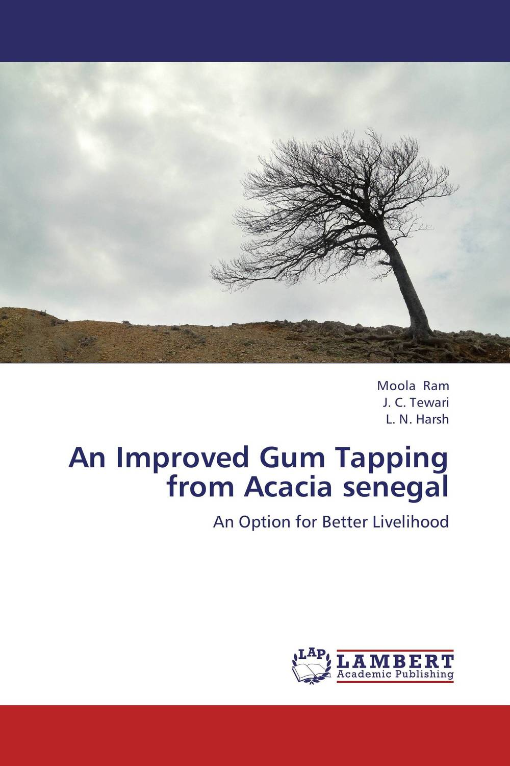 An Improved Gum Tapping from Acacia senegal arcade ndoricimpa inflation output growth and their uncertainties in south africa empirical evidence from an asymmetric multivariate garch m model
