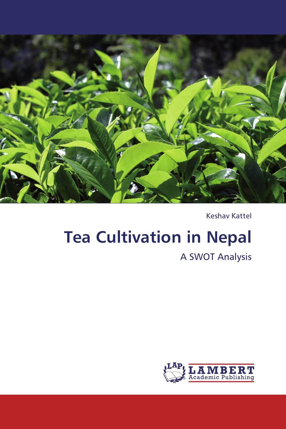 Tea Cultivation in Nepal amitabh baruah a brief overview of small tea cultivation