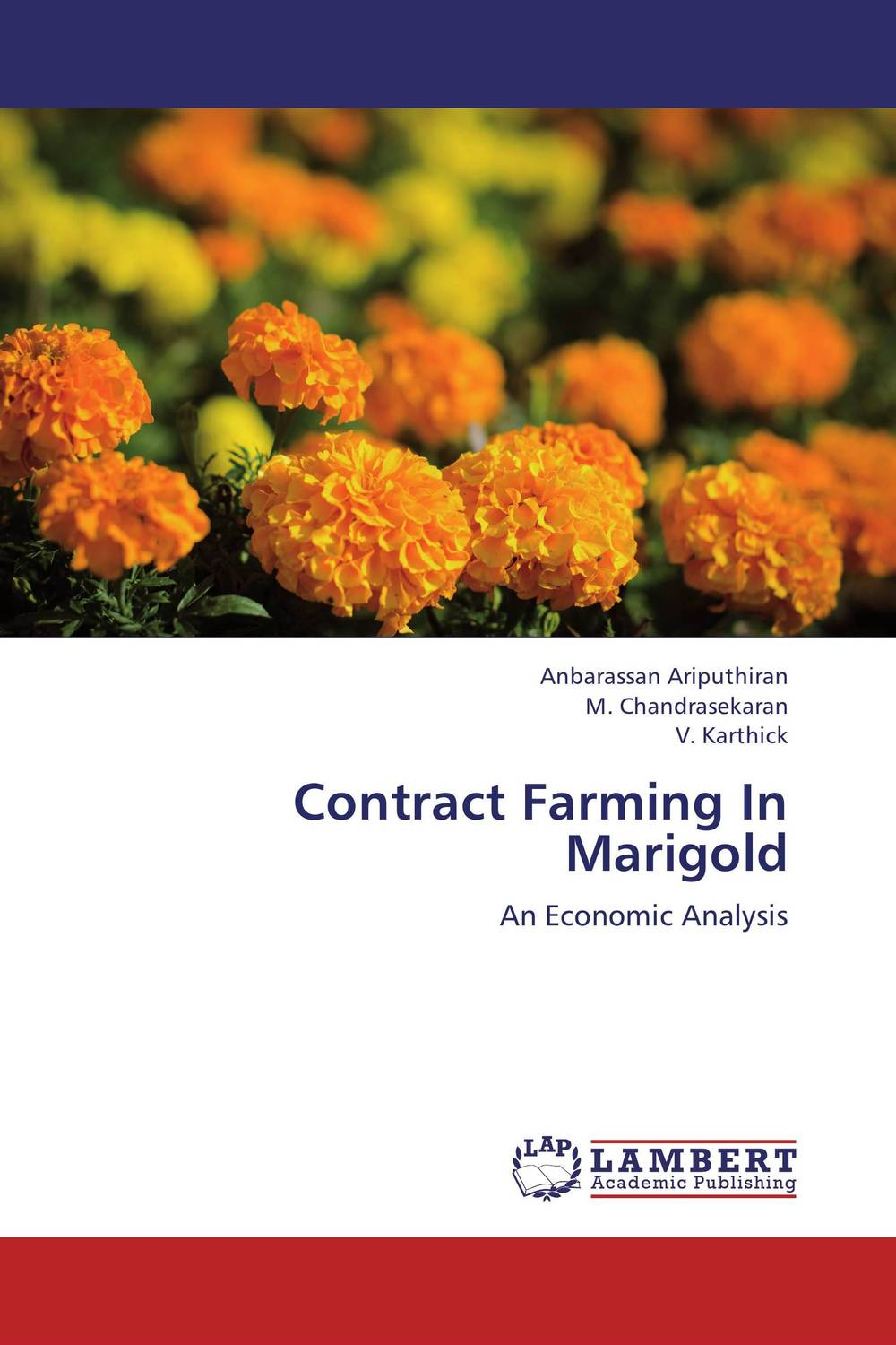 Contract Farming In Marigold the best exotic marigold hotel