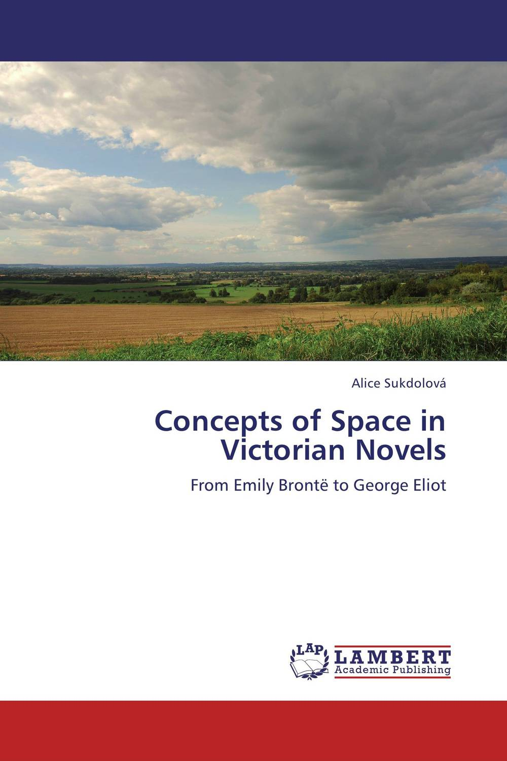 Concepts of Space in Victorian Novels the bronte sisters three novels jane eyre wuthering heights and agnes grey