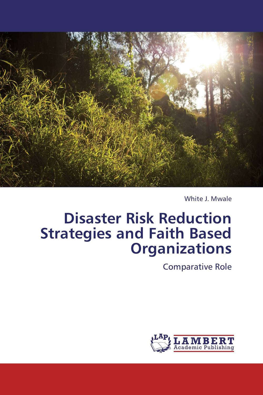 Disaster Risk Reduction Strategies and Faith Based Organizations community based disaster assessment