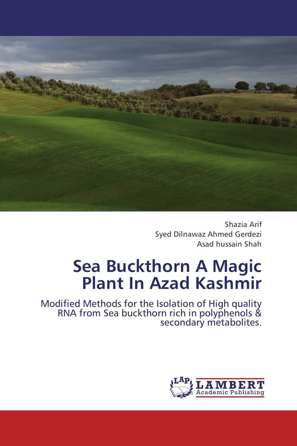 Sea Buckthorn A Magic Plant In Azad Kashmir phenolic compounds from mongolian medicinal plants