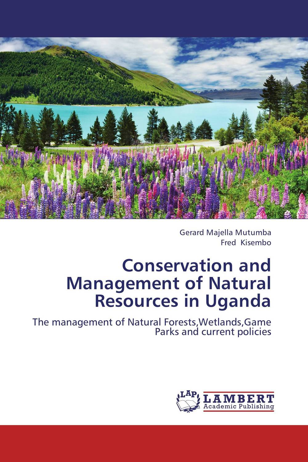 Conservation and Management of Natural Resources in Uganda portney current issues in u s natural resource policy