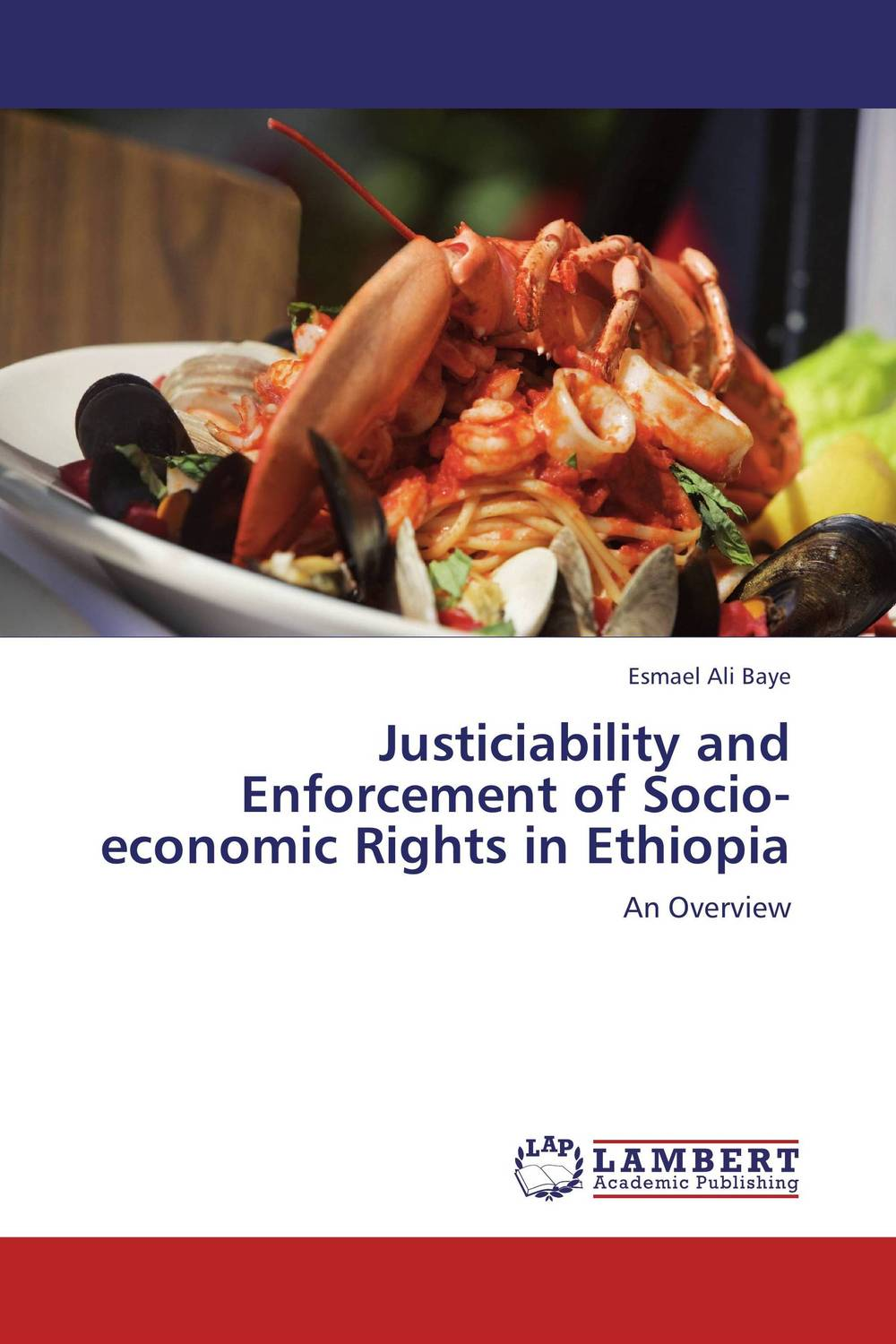 Justiciability and Enforcement of Socio-economic Rights in Ethiopia купить