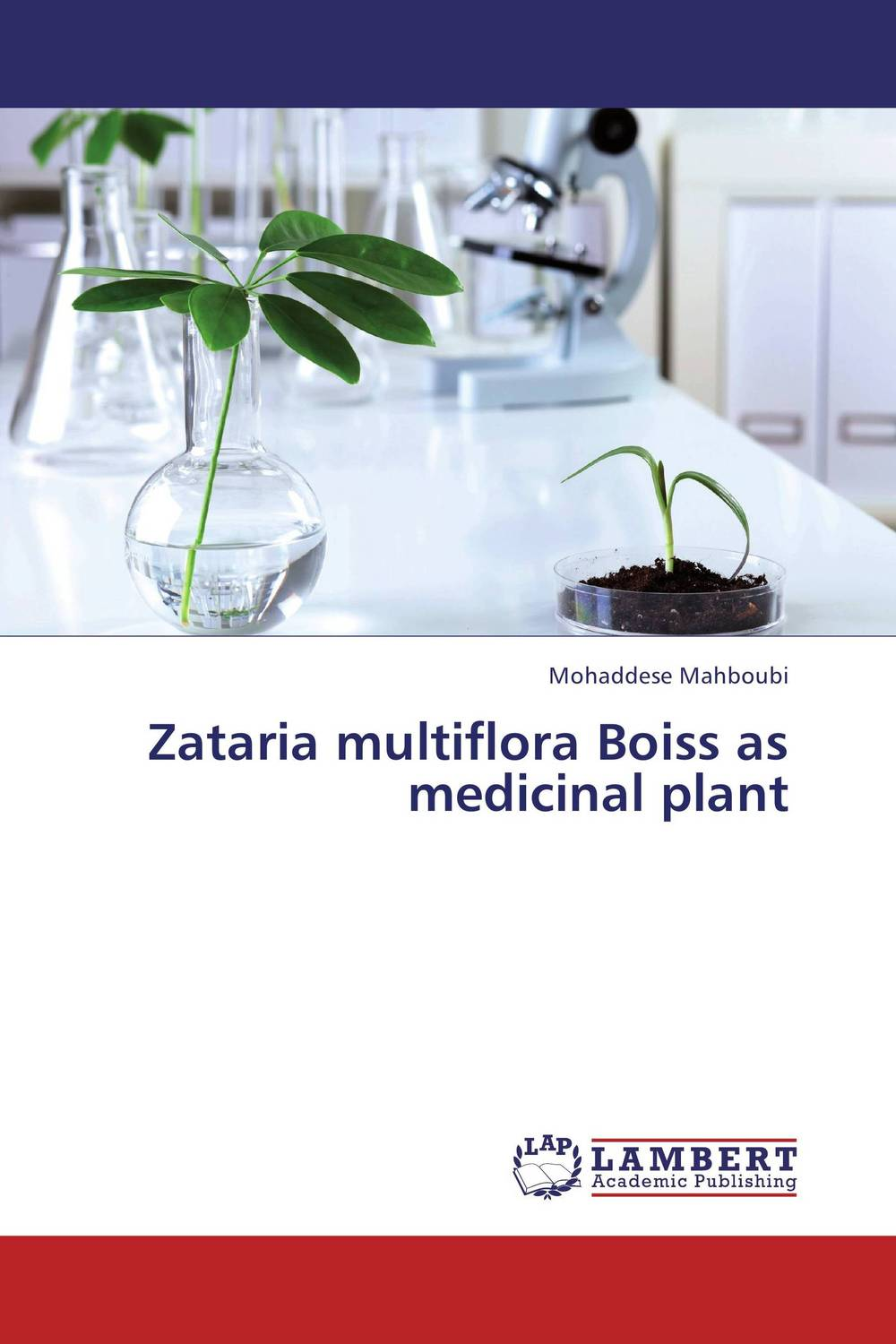 Zataria multiflora Boiss as medicinal plant ce emc lvd fcc ozonizer for gas treatment in electronic plant