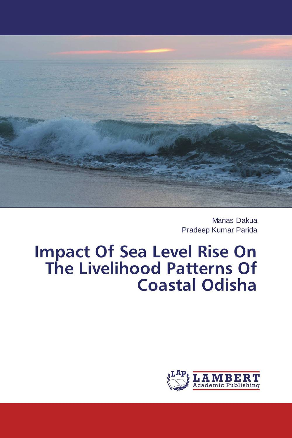 Impact Of Sea Level Rise On The Livelihood Patterns Of Coastal Odisha machu picchu through the fence level 6