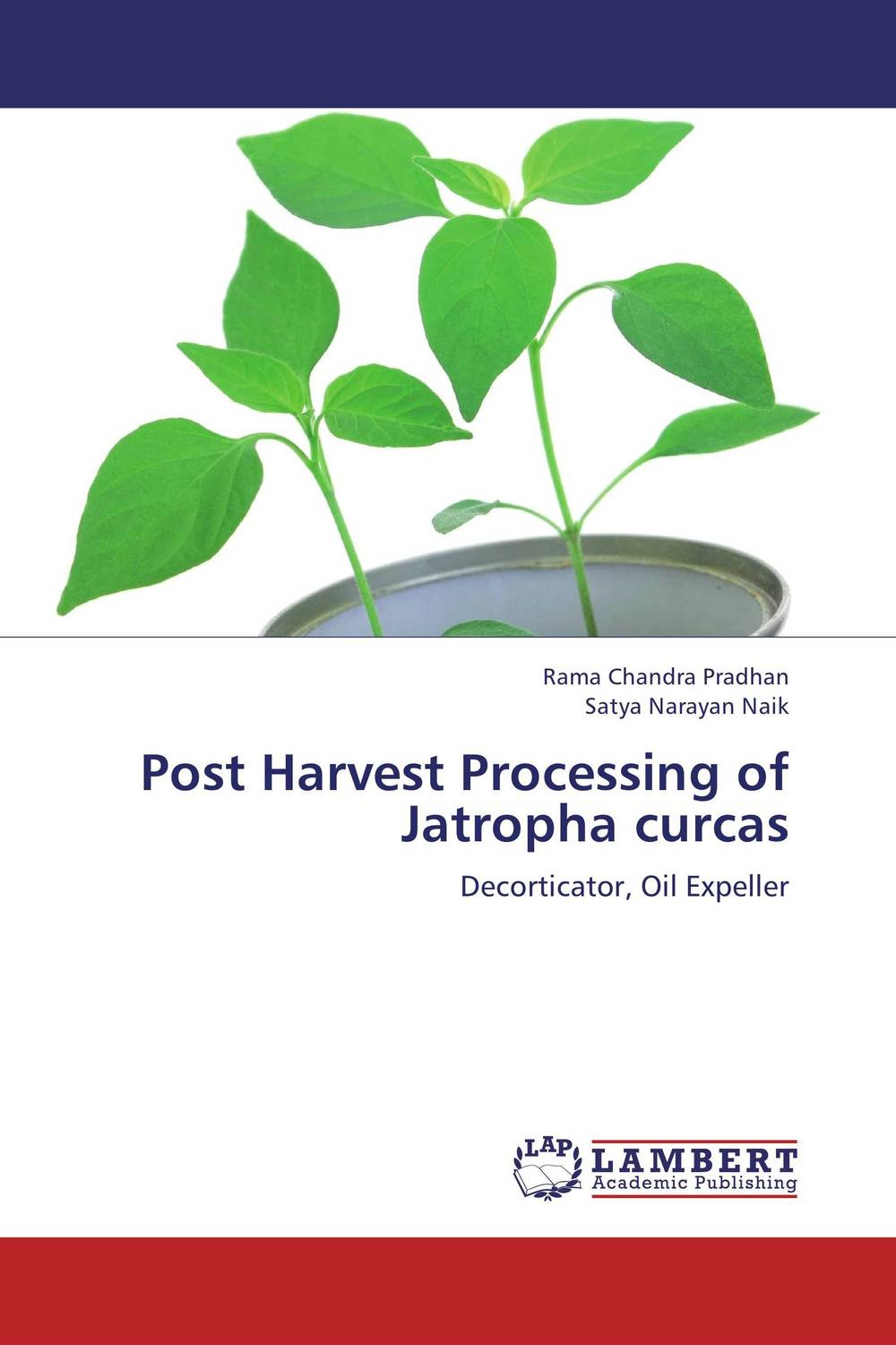Post Harvest Processing of Jatropha curcas