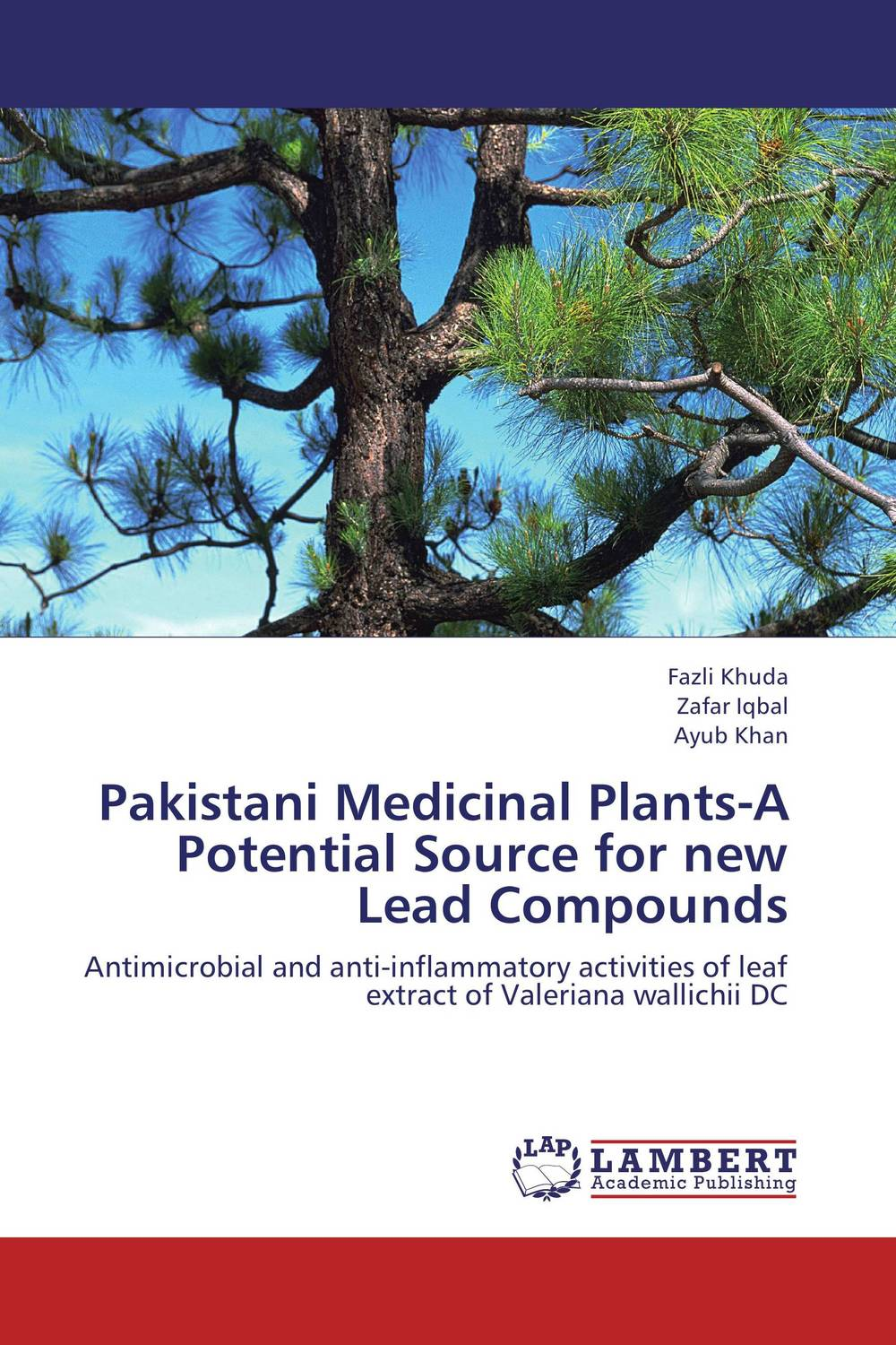 Pakistani Medicinal Plants-A Potential Source for new Lead Compounds george varghese diana john and solomon habtemariam medicinal plants for kidney stone a monograph