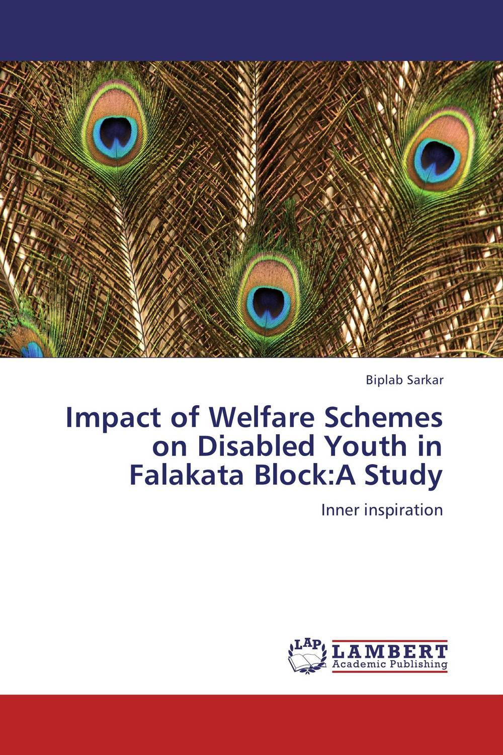 Impact of Welfare Schemes on Disabled Youth in Falakata Block:A Study p susai manickam college going youth and values a study from the tv impact perspective