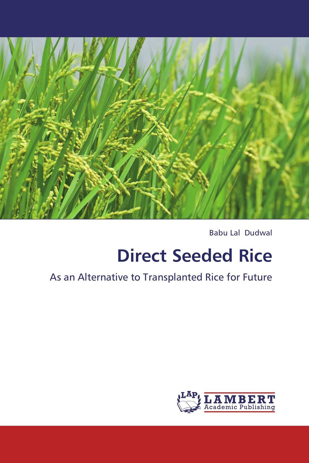 Direct Seeded Rice weed management in organic rice production